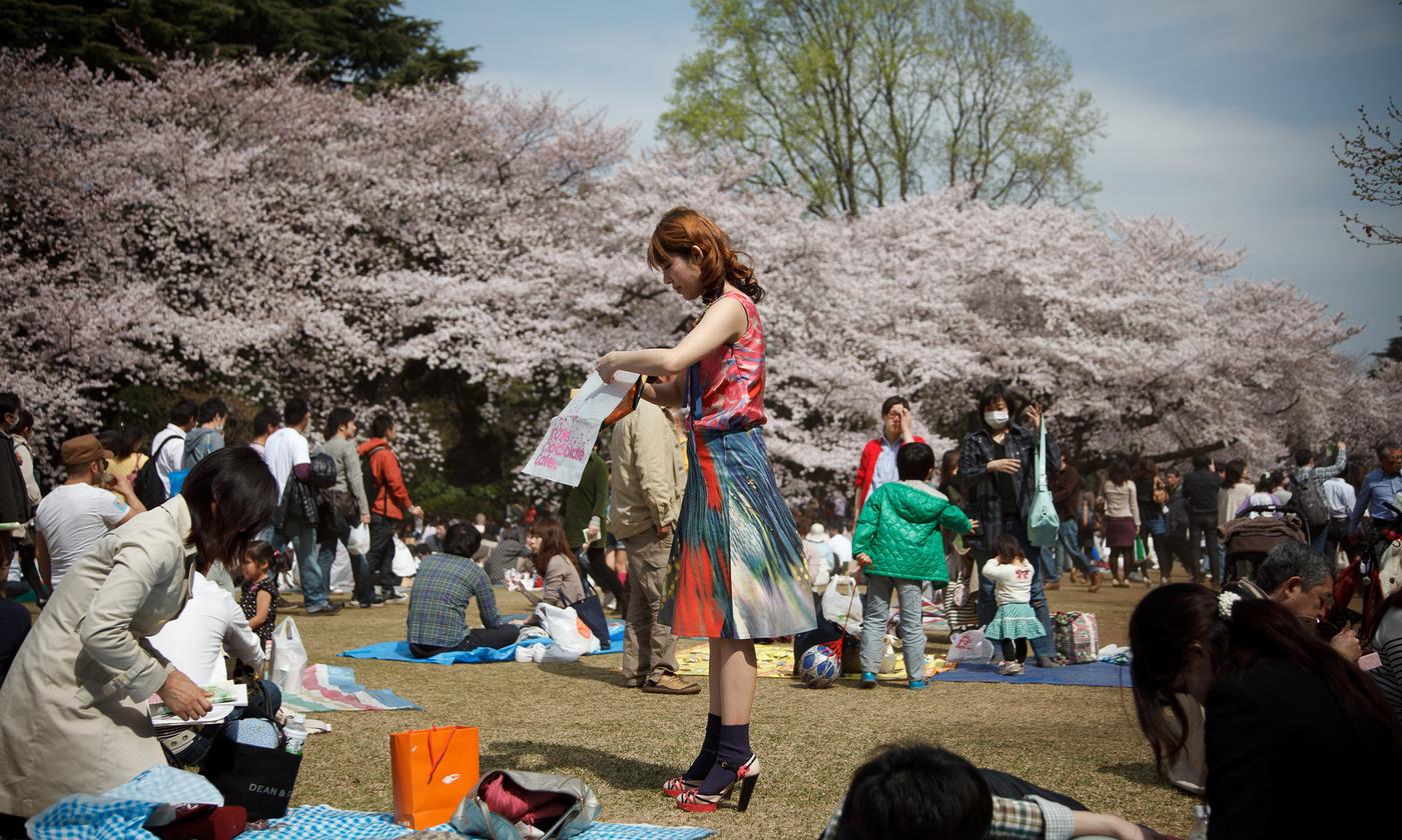 Sakura   Aeon