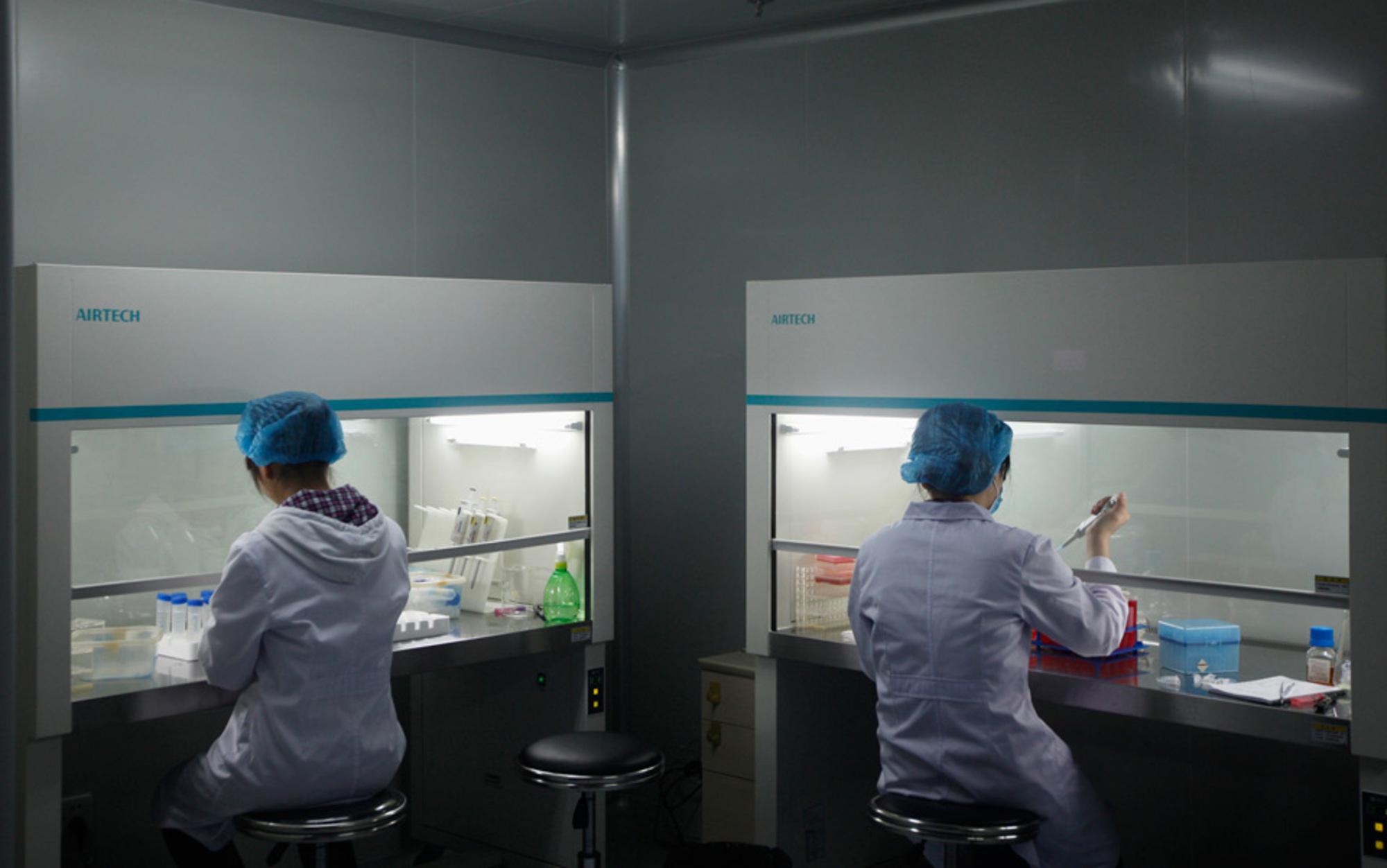 Header genetic research