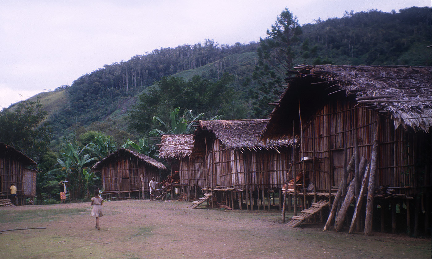 An Urapmin village in Papua New Guinea. <em>Photo courtesy the author</em>