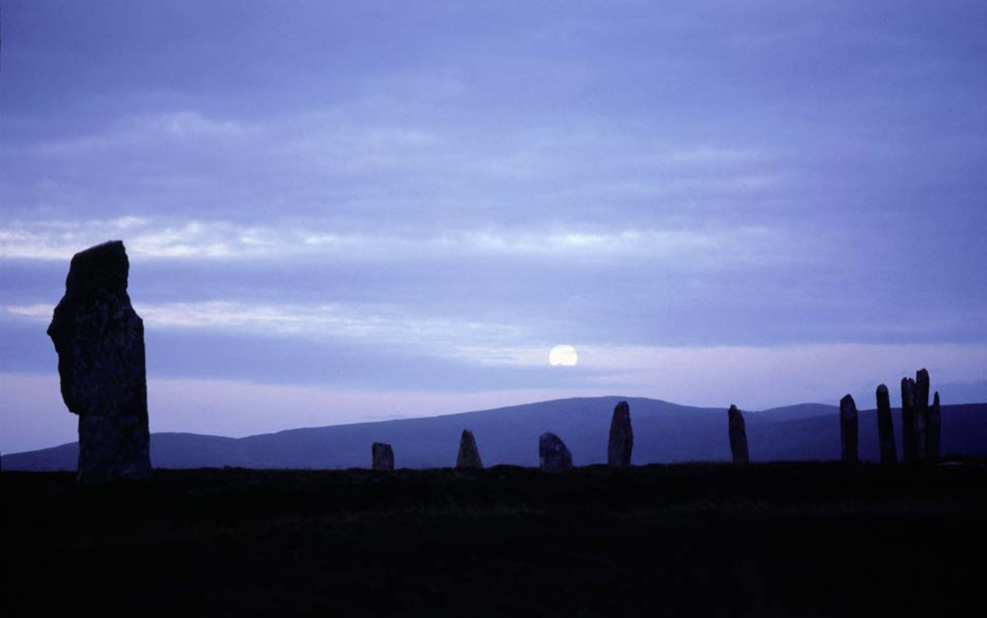 on the lonely midnight trail of orkney u2019s corncrakes
