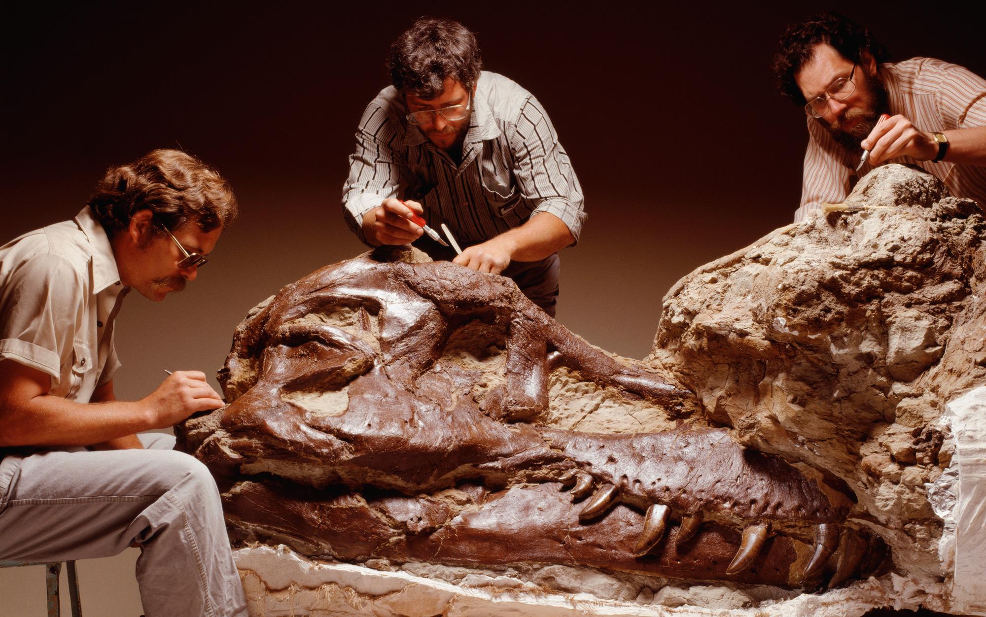 A tyrannosaur of one's own | Aeon