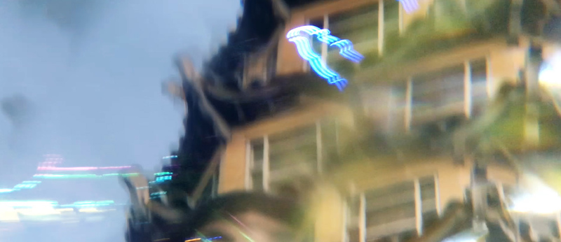 Street angel | Aeon Videos