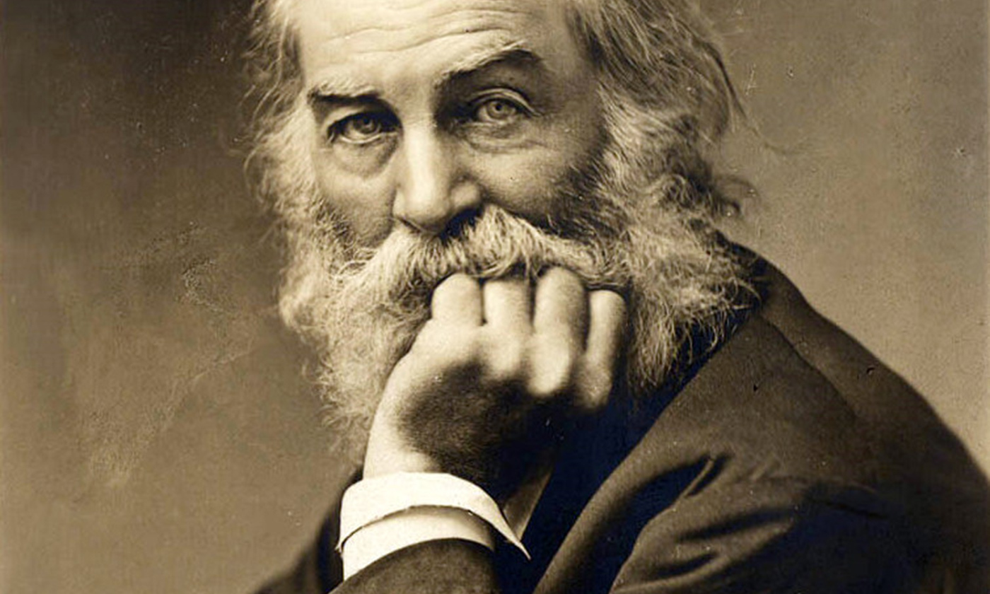 Walt Whitman; the face of masculine vulnerability and pride. <em>Courtesy Wikimedia</em>